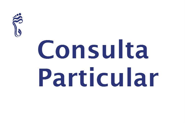 Consulta particular